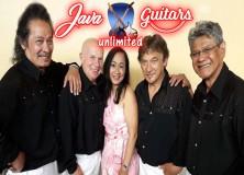 Javan-Guitars-Unlimited