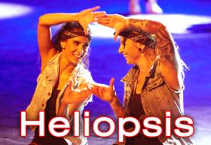 602 Heliopsis